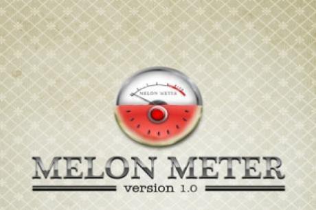 Melopn Meter 1