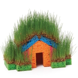 Little Grass House