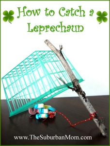 how-to-catch-a-leprechaun